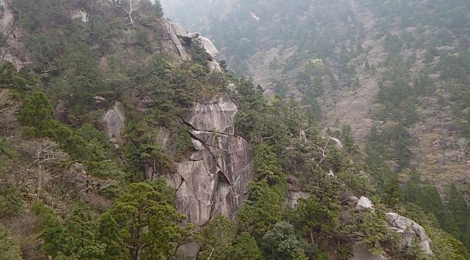 2015.04.29 御在所の岩場を初めて登る 絶壁と花と山ガール