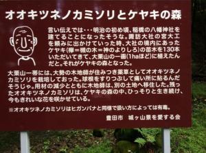 20150822_奥三河夏焼城ヶ山02