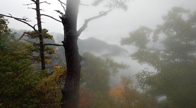 2015/11/07-08 鳳来寺山・宇連山