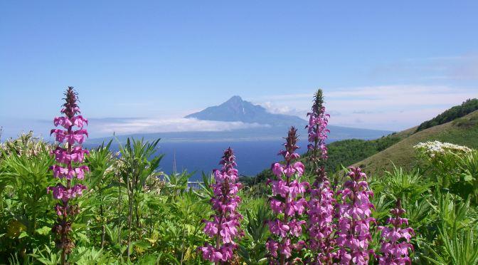 2008/06/26 ~30 花の季節の北海道