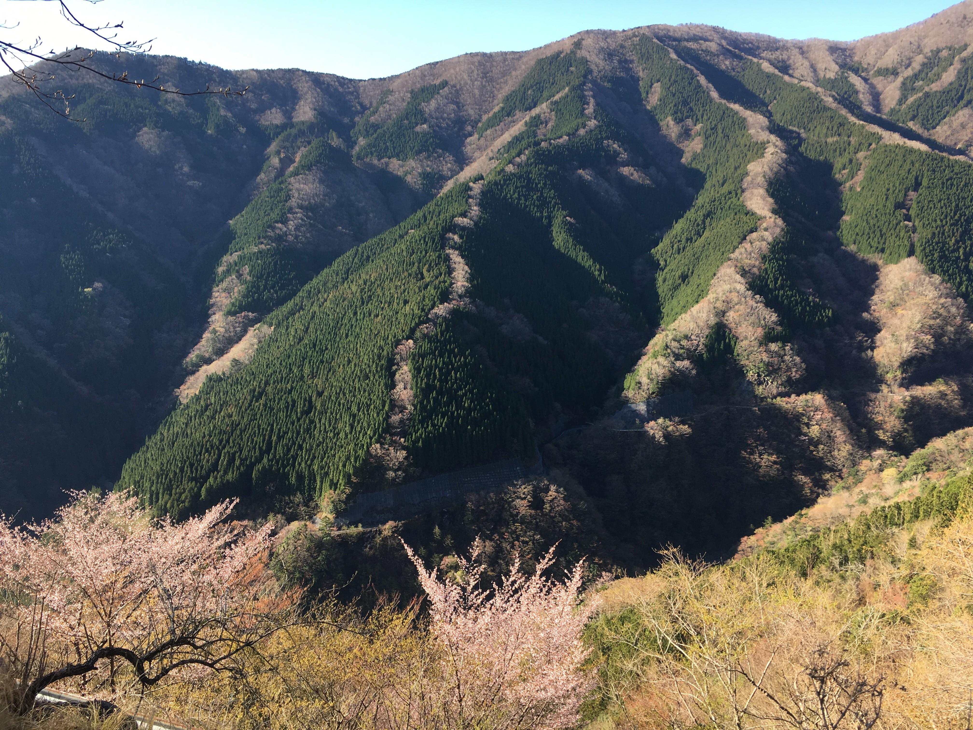 2019/4/17~18  弥山, 八経ヶ岳, 行者還岳