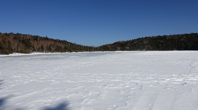 2020/02/24-25『白い池に憧れて』麦草峠・白駒池