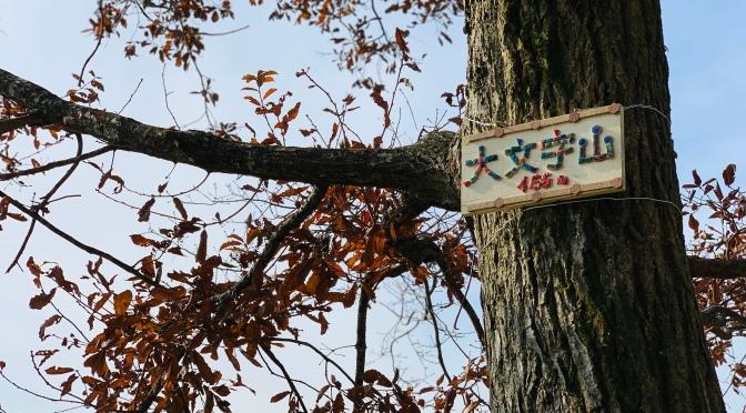2019/12/10大文字山『青春18切符でお得に大文字山と京都観光』