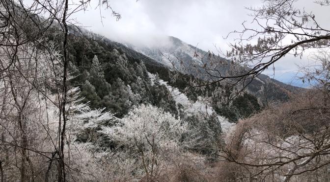 2020/02/27-28 明神岳・桧塚奥峰  『冬の台高山脈  樹氷フェスティバル』