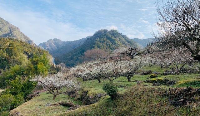 2020/2/22-23宇連山と花祭り『県民の森に泊まり、花祭りを見学』