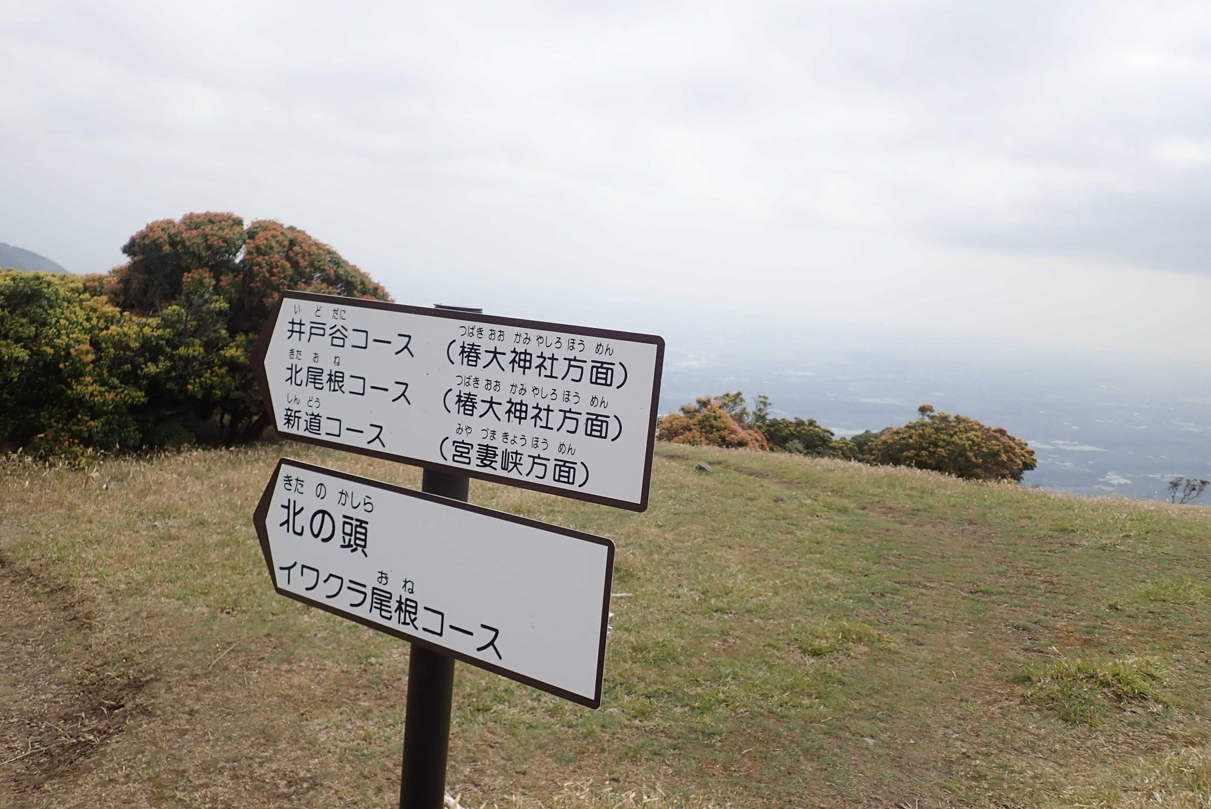 2021/5/01 入道ヶ岳周回コース『みんな大好きな入道ヶ岳』